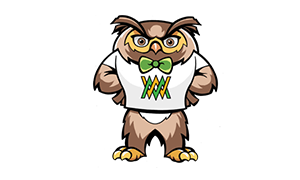 Be Wise Owl Character